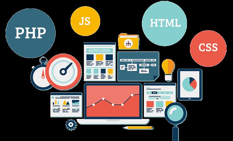 أساسيات تصميم وتطوير مواقع الويب للشركات الصغيرة